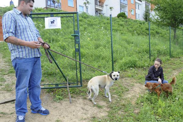 Daň za psa nemení ani jedno mesto v Prievidzskom okrese.