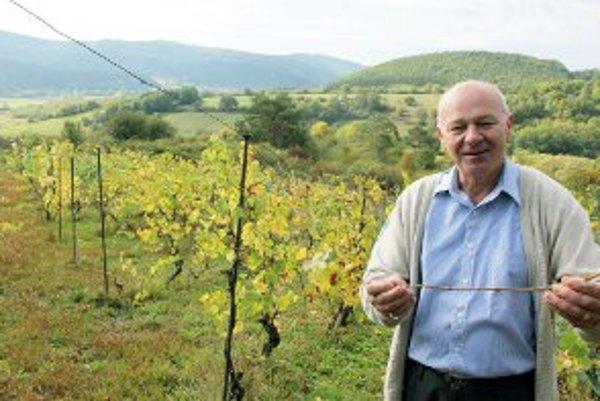 Peter Kováčik má svoj vinohrad desať rokov.