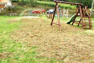 Diviaky najviac zničili trávu pri detských preliezačkách.