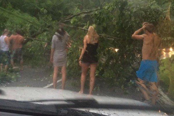 Na Bukovci. Spadnutý strom sa podarilo odstrániť vodičom.