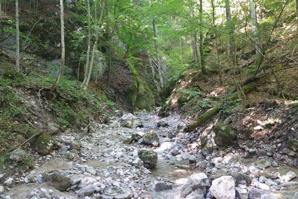 Začiatok Čertovej doliny pri Muránskej planine nad Tisovcom.