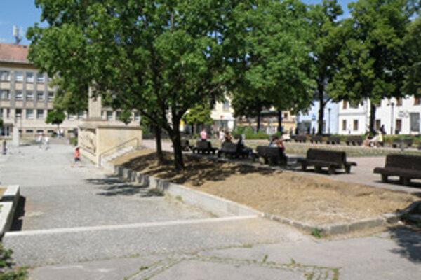 Kríky v tejto časti námestia nahradí tráva.