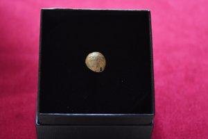 Guľka z muškety, ktorá sa našla na Madagaskare na mieste, kde pravdepodobne zahynul Móric Beňovský.