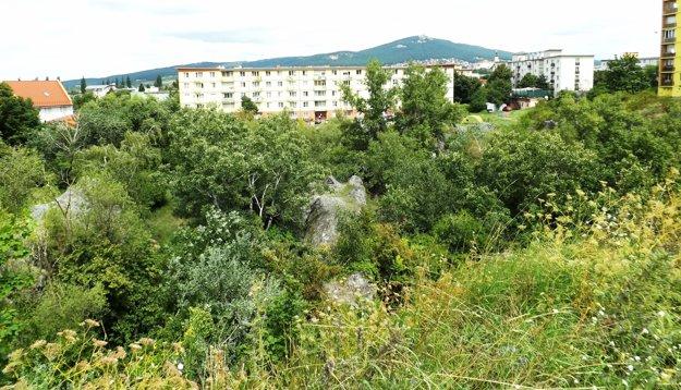 Rolfesova baňa je chránená prírodná pamiatka.
