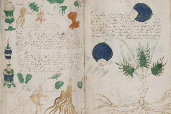Časť Voynichovho rukopisu.