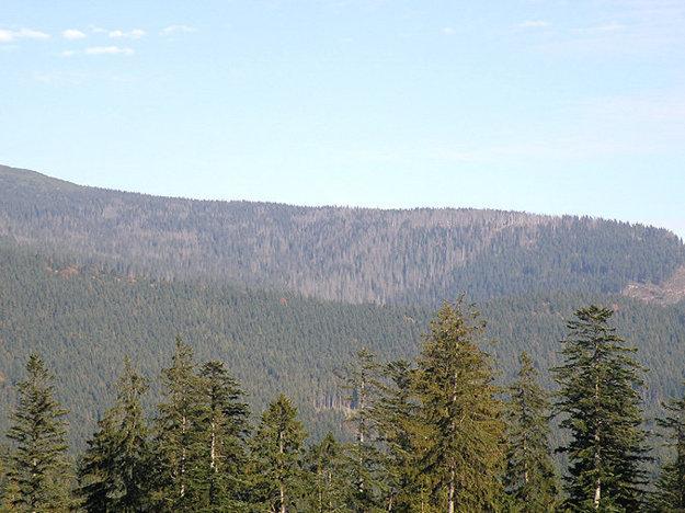 Hore chránená zóna, na spodku les po ochranných opatreniach.