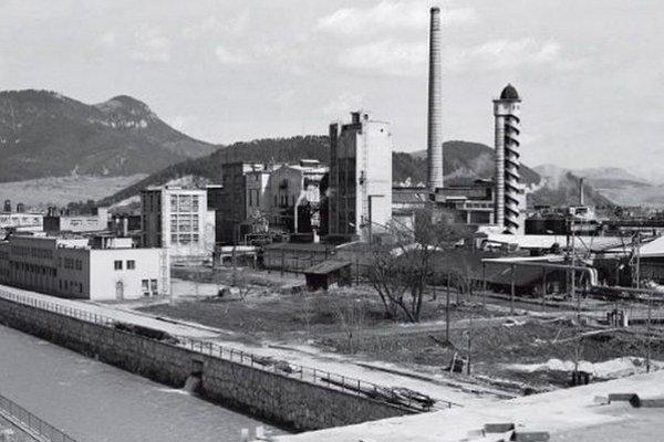 V časoch najväčšieho rozmachu dominoval komplexu vysoký komín a sulfitová veža s vonkajším schodiskom.