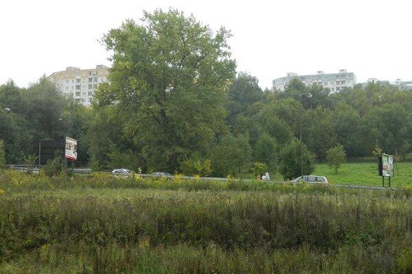 Za dažďa sú nehody pod Hájikom takmer pravidlom.