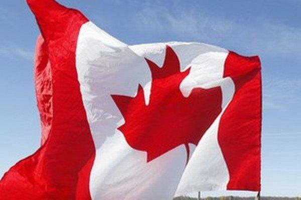 Podľa vyšetrovateľov plánoval pomocou bômb ovládaných na diaľku vyhodiť do povetria konzulát USA a budovy kanadských finančných inštitúcií v Toronte.