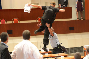 Daňa stiahol na zem mestský policajt.