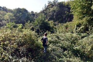 Na mieste bývalého kameňolomu Malý Dobozer. Takto vyzerá bývalé jazierko dnes...