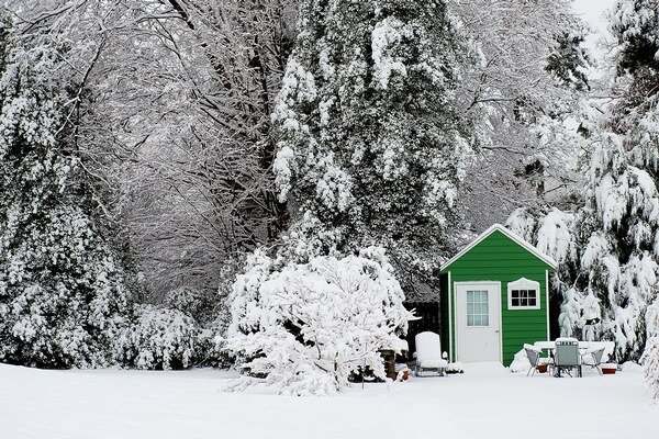 USA ochromil sneh.