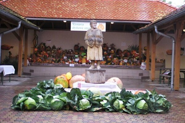 Dni zelá v Stupave.