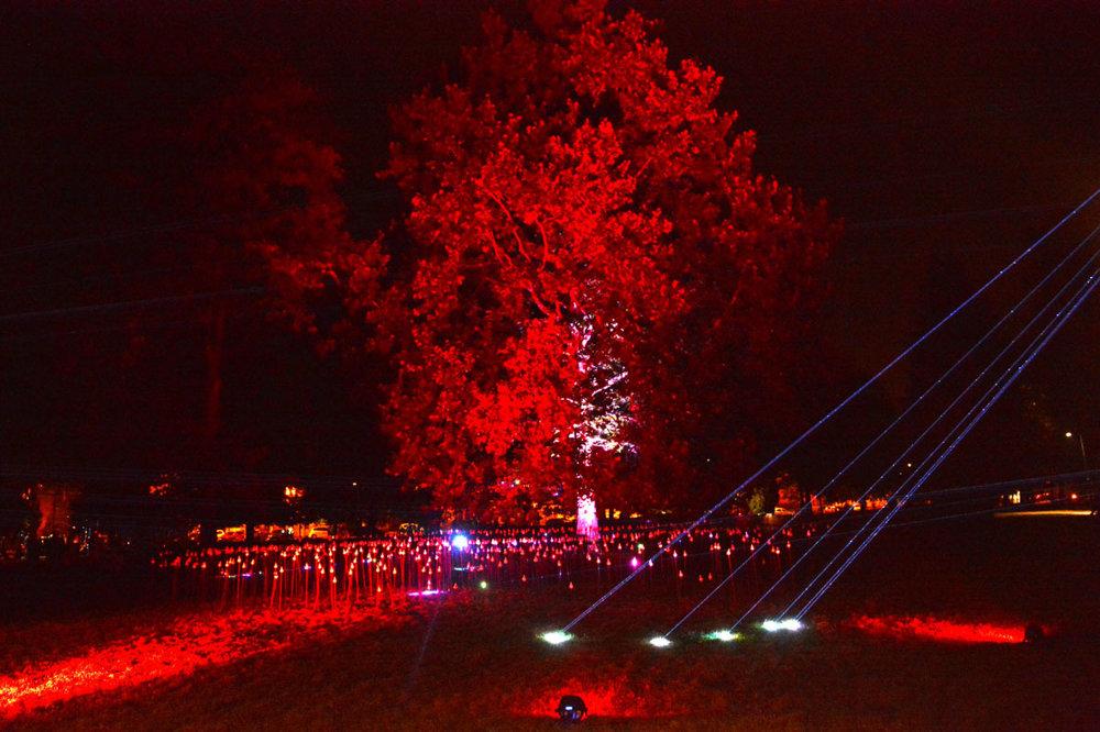 Zázračný strom života v Mestskom parku a čáry-máry s laserom. Najviac si to užívali decká, keď zistili, že svetlá reagujú prostredníctvom snímačov na pohyby ich rúk. Druhá (alebo prvá?) inštalácia  Kanaďana menom Maotik, hlavnej hviezdy tohoročnej Bielej noci v Košiciach.
