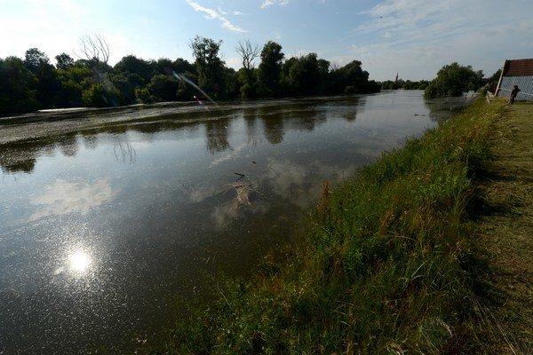 Rieka Morava.