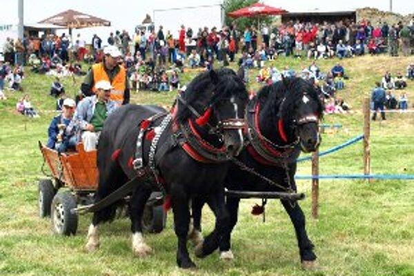 Furmani absolvovali s koňmi viacero súťažných disciplín.
