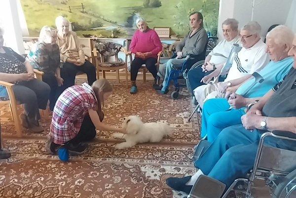 Canisterapia - psy pomáhajú ľuďom.