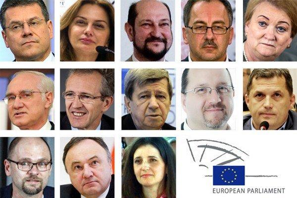 Trinásť slovenských europoslancov.