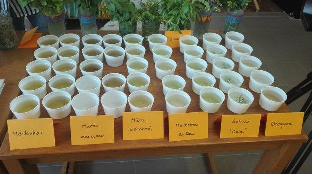 Čaje sa dajú pripraviť s rôznych bylín.