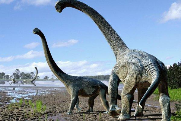 Umelecké zobrazenie Savannosaura elliottorum