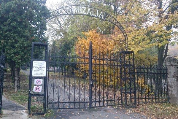 Cintorín Rozália. Správca sľubuje nápravu avylepšenia.