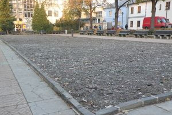 V Prievidzi sú už kvetinové záhony pripravené na zimné obdobie.