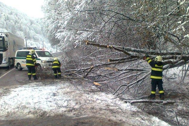 Stromy nevydržali váhu snehu. Padajú nielen na cesty ale aj elektrické vedenia.