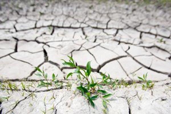 Keď budú extrémne suchá, ľuďom aj zvieratám vyčlenia pár litrov vody na deň.