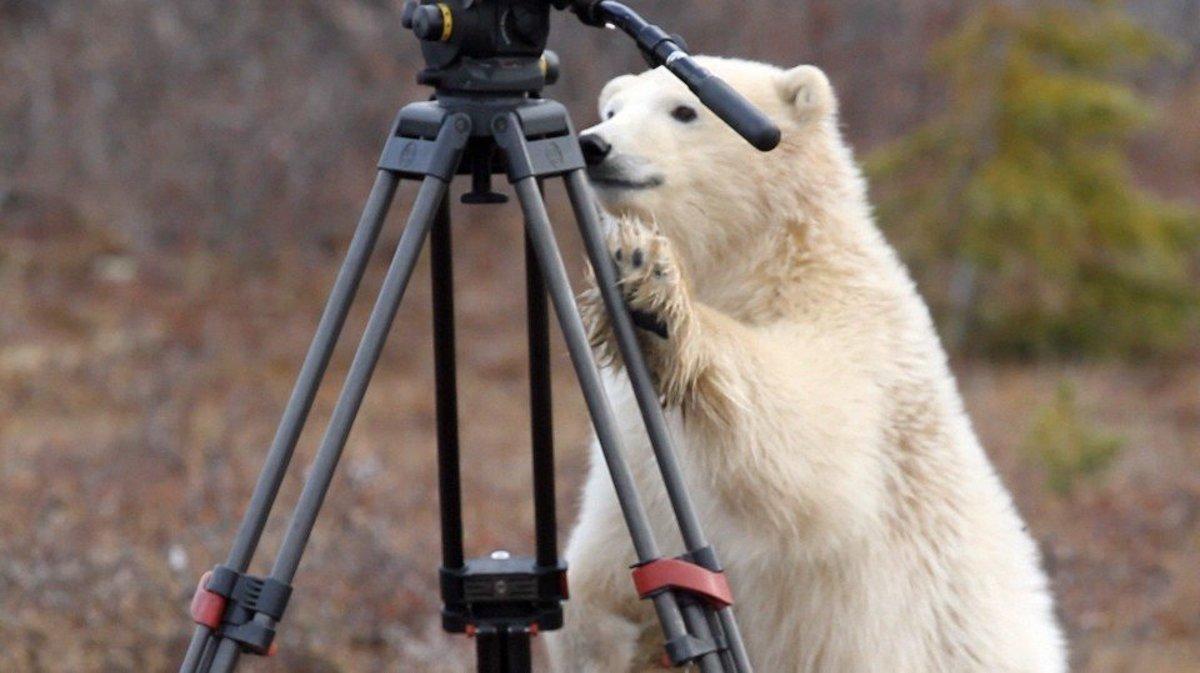 Redaktori STV sa pred zimnými olympijskými hrami zahrali na športovcov a nafotili exkluzívne fotografie.