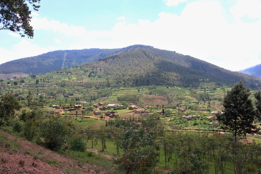 Rwandské vulkanické hory a klíma sú ideálne na pestovanie výberovej kávy.