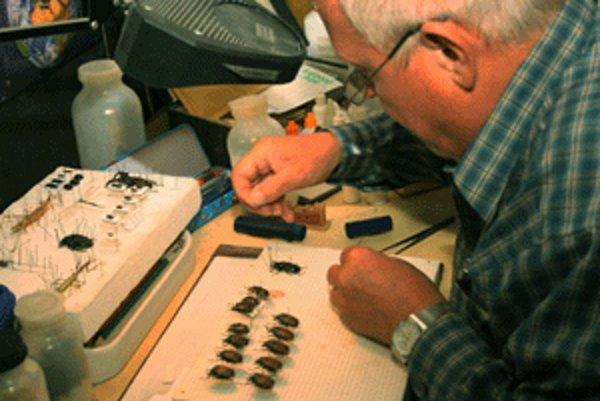 Pavol Arpáš sa zbieraniu chrobákov venuje už od mladosti.