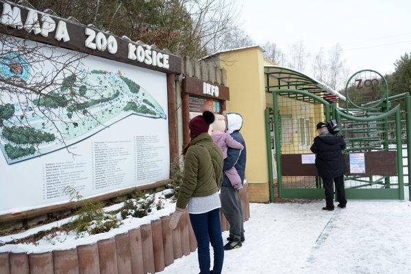 Brány zoo sa otvorili pre verejnosť.