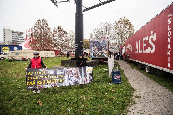 Sloboda zvierat bojuje za zákaz zvierat v cirkusoch už niekoľko rokov.