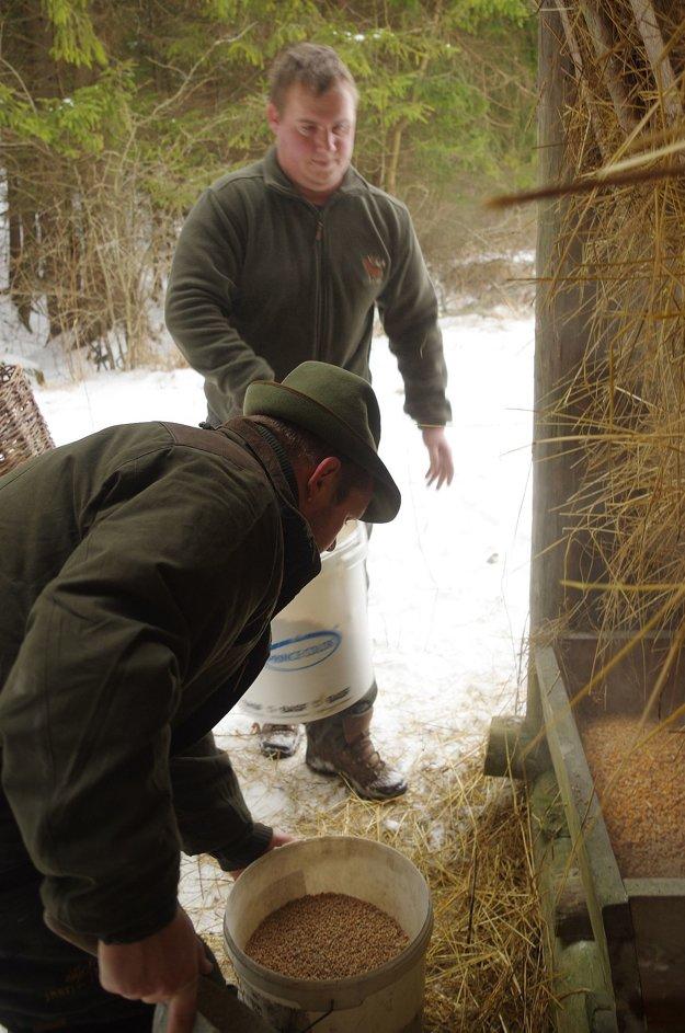 Poľovníci z Domaniže napĺňali kŕmidlá túto zimu už trikrát.