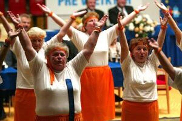 Športové haly a spartakiádne zostavy dôchodkýň, aj taká bola kampaň v roku 2004 na podporu HZDS. Tento rok chcú byť kandidáti striedmejší.