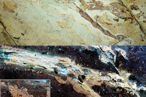 Noha dinosaura Anchiornis. Vrchný obrázok ukazuje nohu pri normálnom svetle. Spodný obrázok je pod zobrazený pri svetle ultrafialového lasera.