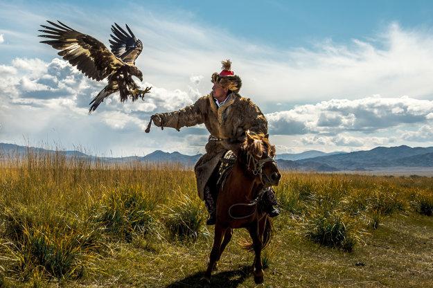 Sokoliar v Mongolsku