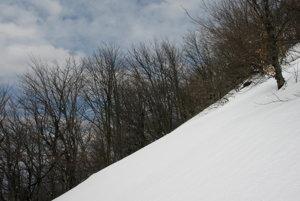 Pod vrcholom Vihorlatu zo západu. Svah je poriadne strmý.