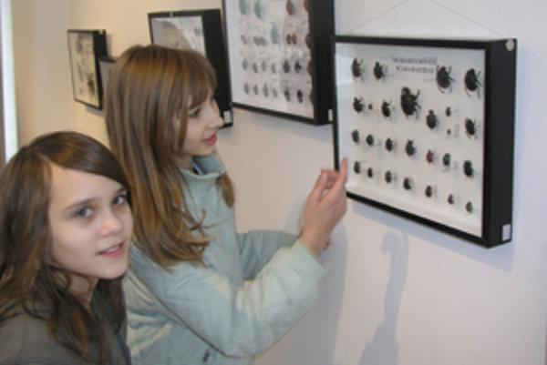 Mládež prichádza na výstavy hlavne v sprievode učiteľov.