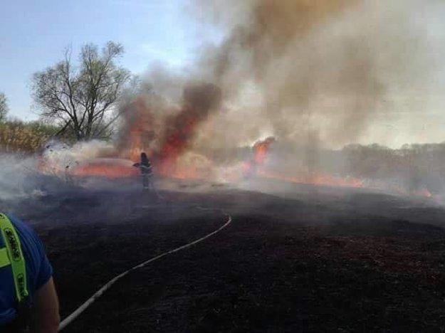 Plamene siahali do výšky niekoľkých metrov.