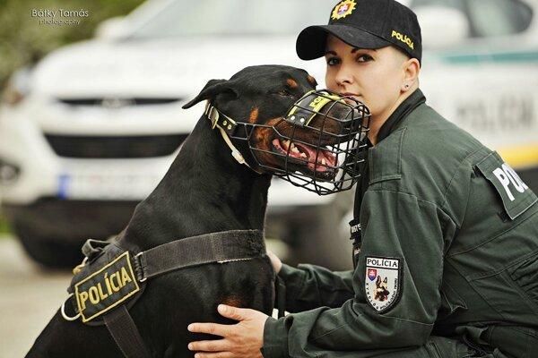 Muža vypátral policajný pes Iron.