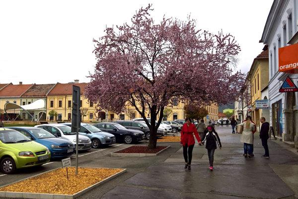 Mesto Rožňava bude hľadať kandidáta na architekta mesta.