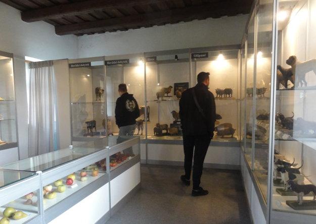 Prehliadka objektov skanzenu múzea.