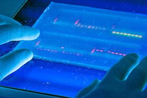 Analýza DNA.