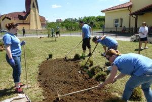 Vzariadení občianskeho združenia Teresa Benedicta vMichalovciachbrigádnici upravovalivonkajšej záhrady, sadili kvetiny, trávy akríky.