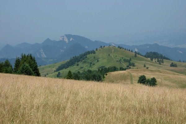 Na hrebeni Malých Pienin. Najbližšie Šlachovky (Wysoki Wierch), v pozadí centrálna časť Pienin s Tromi Korunami.
