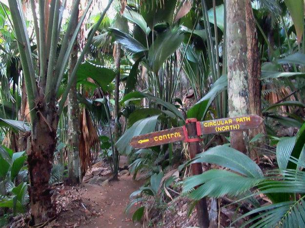 Na Seychelách nájdete aj značené turistické chodníky.