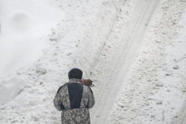 Žene nesie svojho psa na rukách na ceste v Bukurešti.