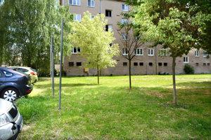 Stromčeky, vysadené v roku 2014.EEI už má na tomto mieste vydané stavebné povolenie na výstavbu parkovísk.