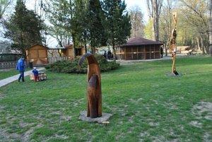 Pozývame všetkých Prešovčanov na výstavu herbárov z rastlín a drevín rastúcich v areáli Ekoparku dnes od 10.00 do 15.00 hod. v Eko Parku Holá hora.
